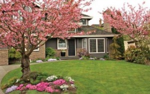 Use Your Landscaping To Enhance Curb Appeal