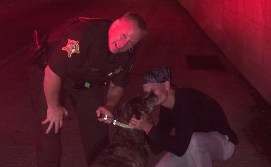 Hero Officer Rescues Dog From Burning Car In Indiana